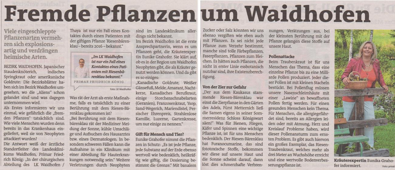 Fremde Pflanzen um Waidhofen Primar Friedrich König