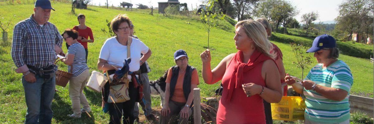Eunike Grahofer erklärt die Kräuter und Pflanzen der Waldviertler Natur