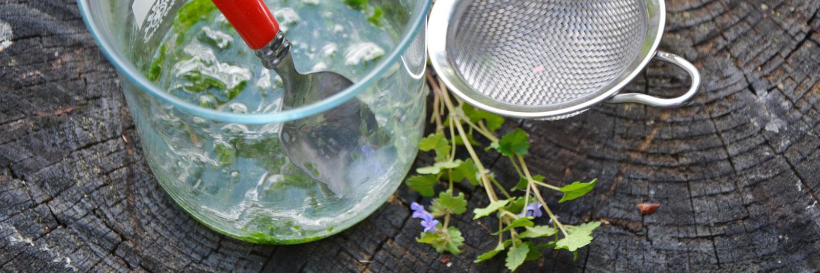 Glas mit Gundelrebe Sieb Kraut Gundelrebe