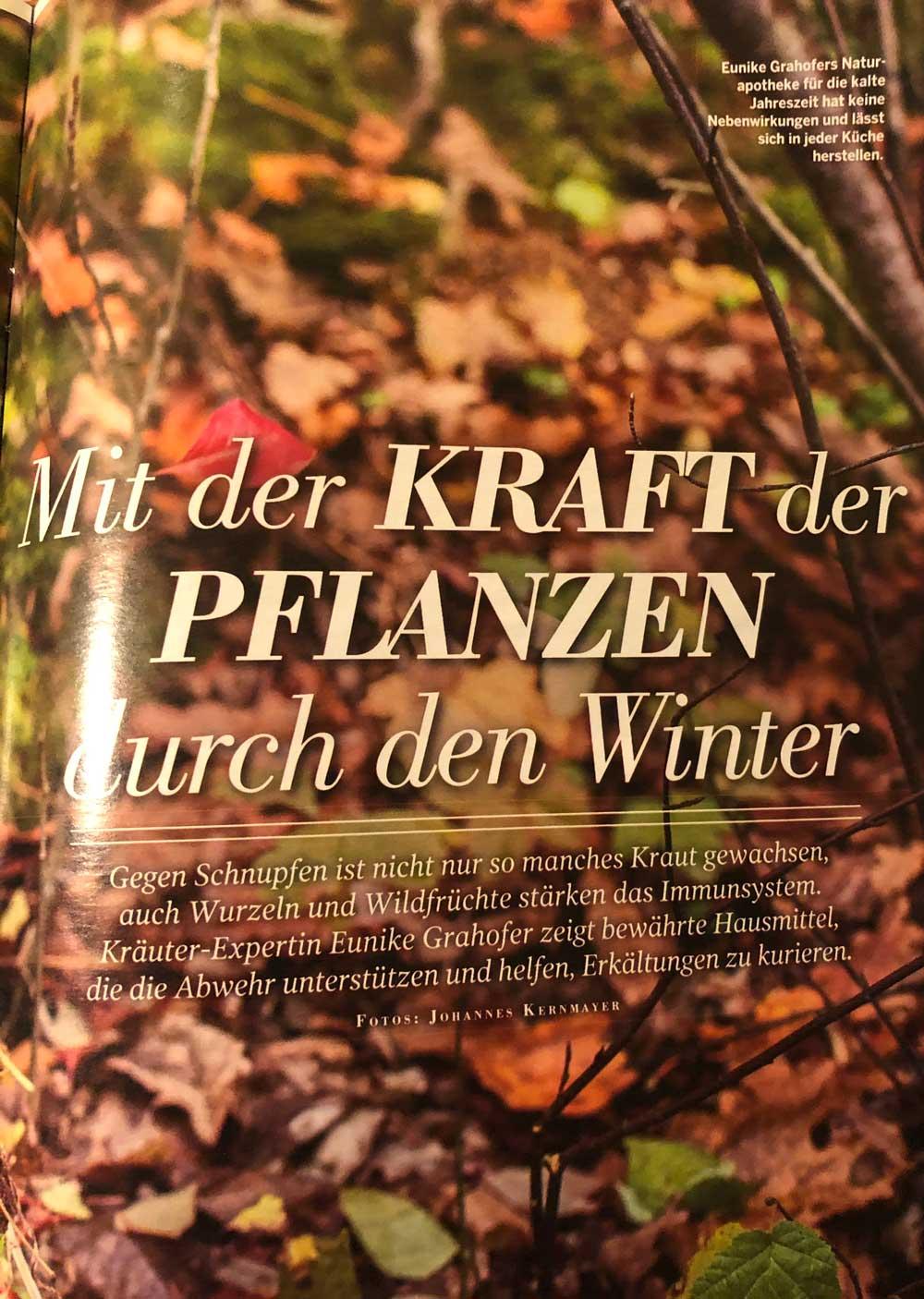 Erste Seite Bericht Naturlust Mit der Kraft der Pflanzen durch den Winter