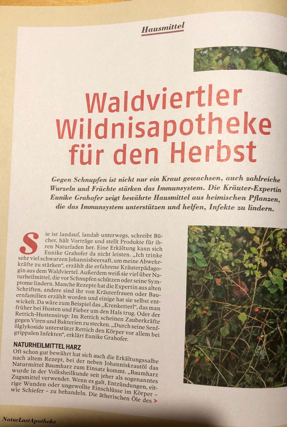 Titelseite Artikel Waldviertler Wildnisapotheke fuer den Herbst