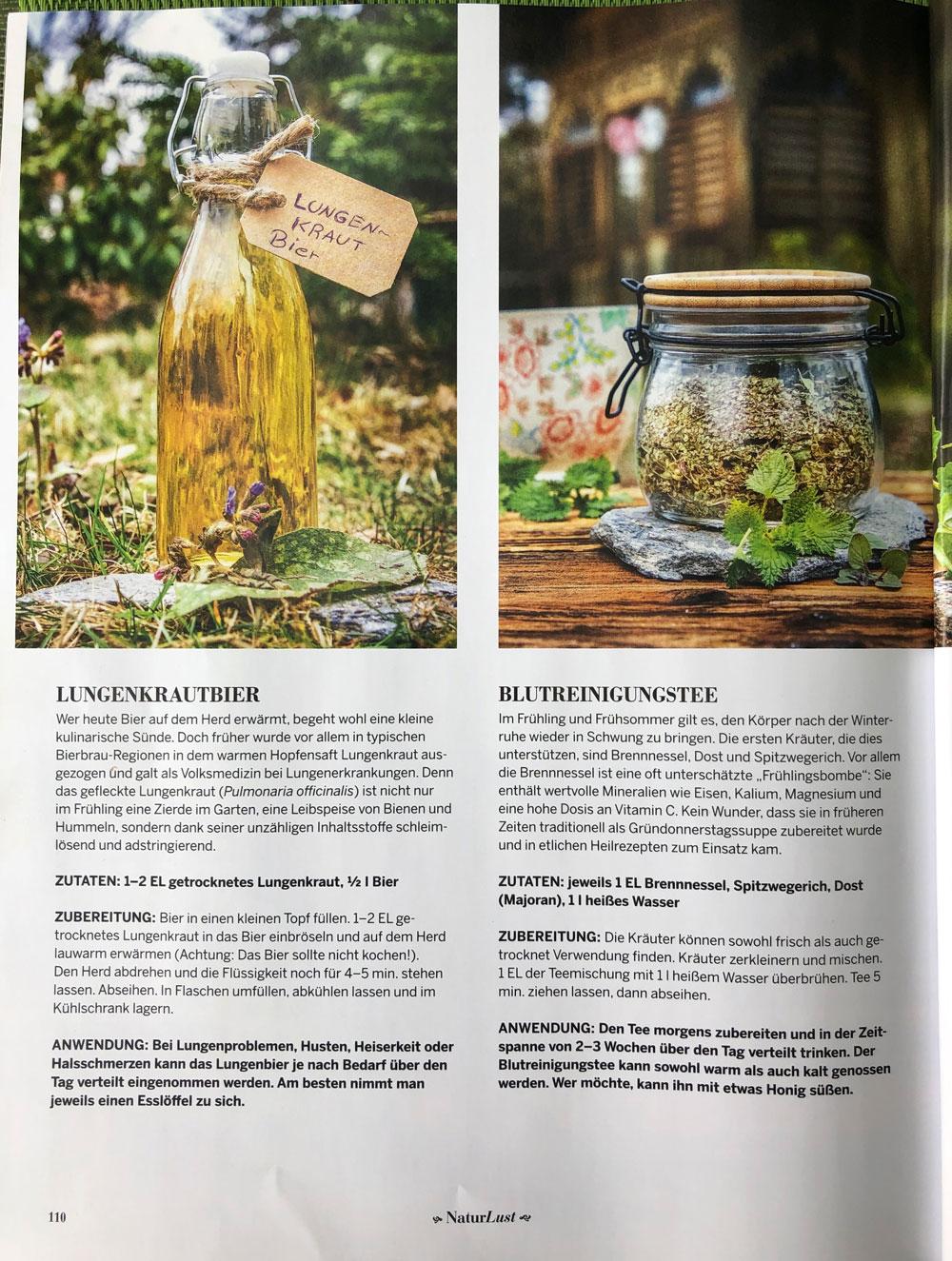Fotos und Rezepte Luntenkrautbier und Blutreinigungstee